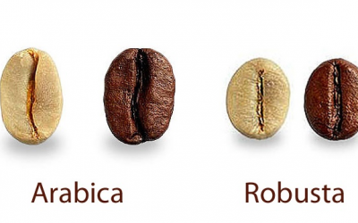 Arabica, Robusta and everything in-between